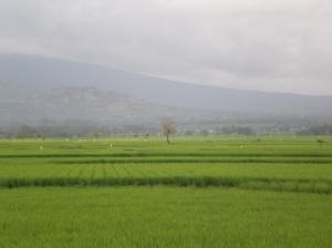 Bisappu - Bantaeng