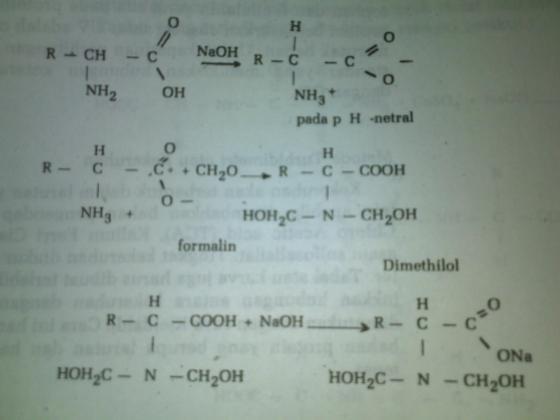 Reaksi Titrasi Formol